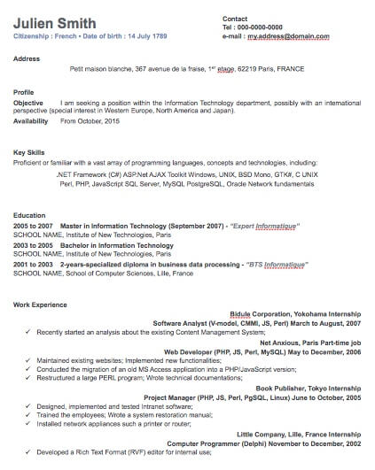 One Column Professional Resume Template